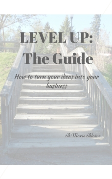 LEVEL UP- The Guide Cover Final